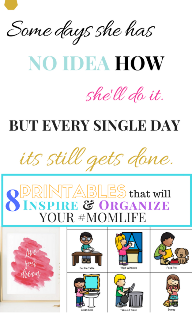 image regarding Free Organization Printables identify 7 Totally free PRINTABLES In direction of Arrange YOUR Finish Lifetime -